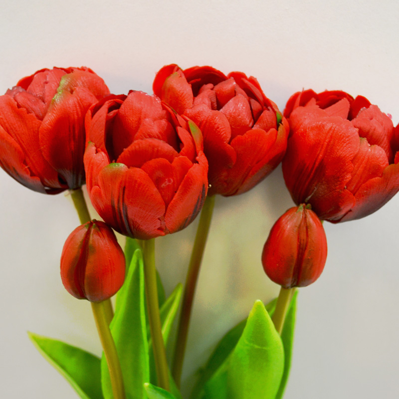 Tulipany Sally red puget  44 cm