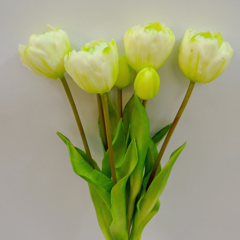 Tulipany Sally cream puget 44cm